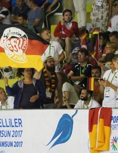 Fans bei Handball